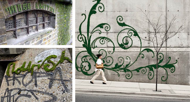 moss graffit artwork examples