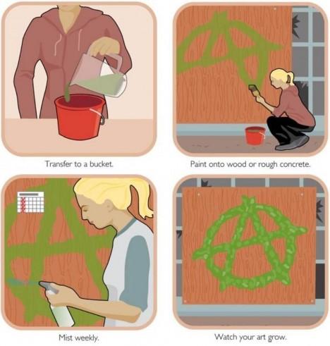 moss graffiti guide steps