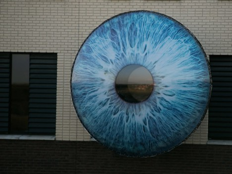 Eye Installation 3