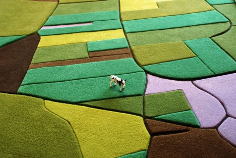 aerial carpet with cow