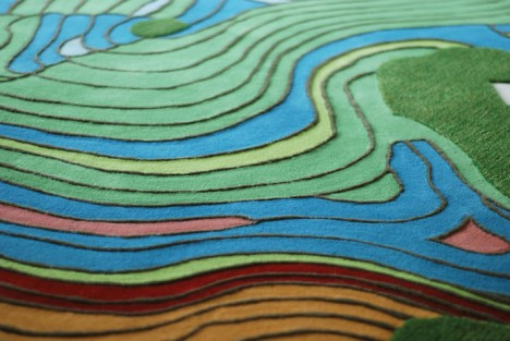 aerial rug topographic detail