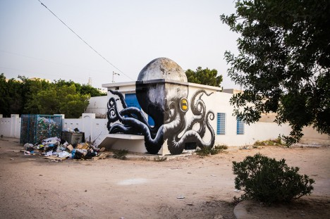 roa north africa graffiti