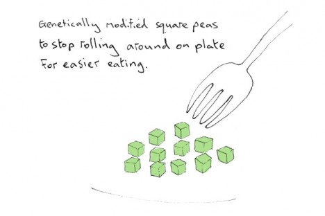square peas genetically modified