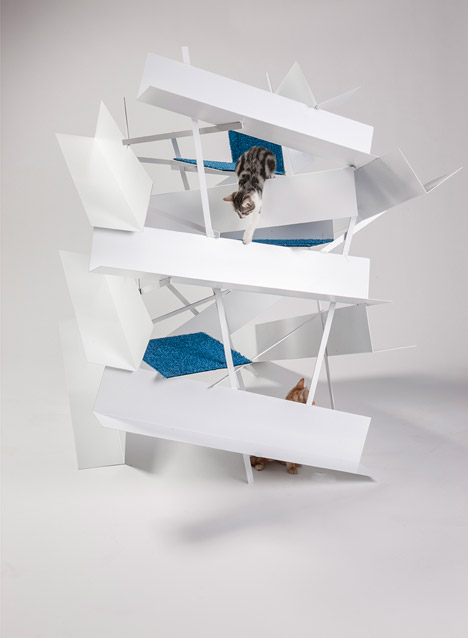 lehrer architects cat home