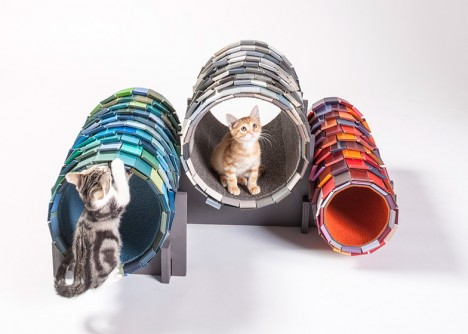 nace cat tunnel homes