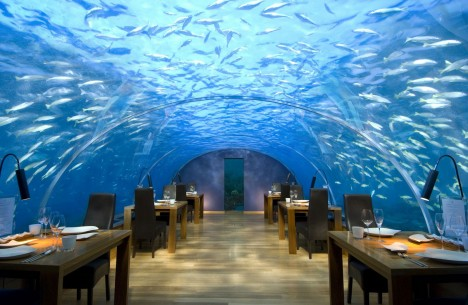 Amazing Restaurants Ithaa Undersea 1