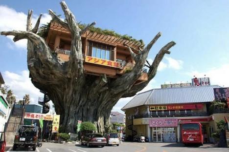 Amazing restaurants Gajumaru