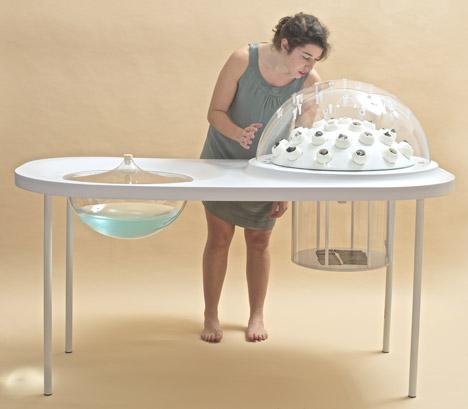 Fungi Farm Prototype Turns Waste Plastic into Edible Treats