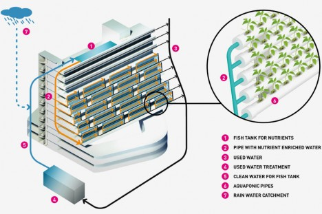 urban farming aquaponics module