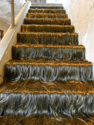 abandoned art hairy stairs 2