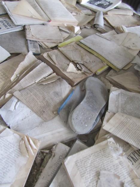abandoned library 9b