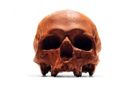 edible chocolate skull
