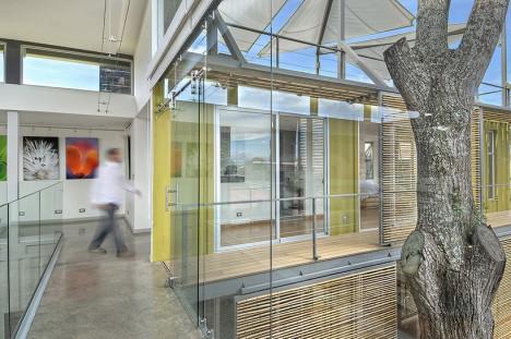 green enclosed tree interior