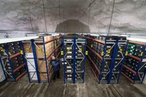 seed vault interior stacks