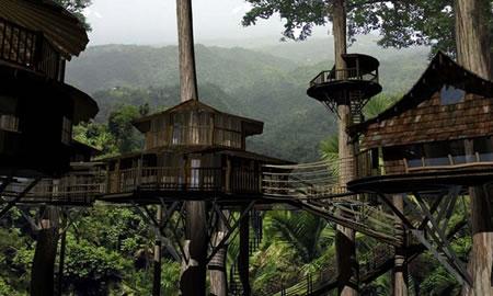 finca bellavista treehouses 1