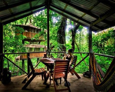 residential treehouses