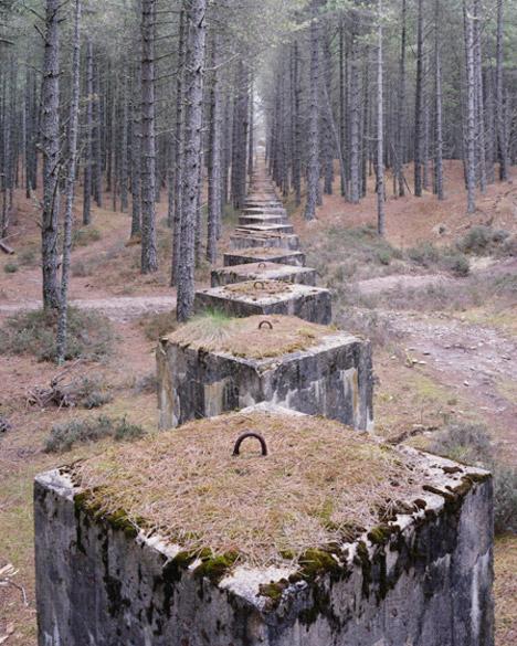 war ruins woods