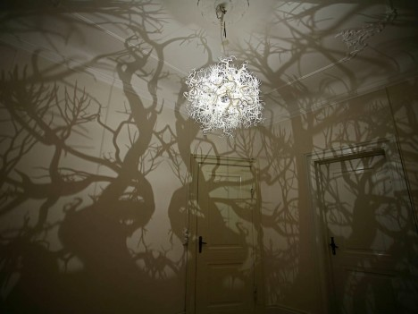 Shadow Art Branches 1
