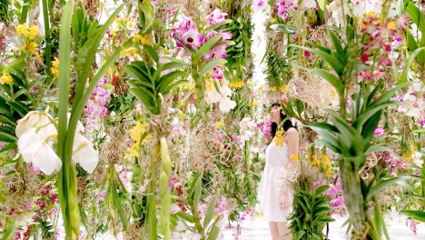 floating flower art installation