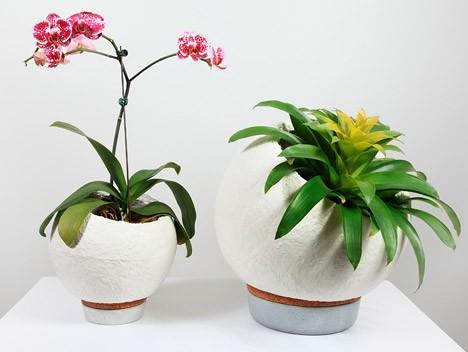 plant pot mushroom
