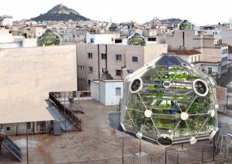 urban farming geodesic 1
