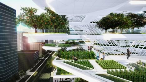 urban farming korea 2