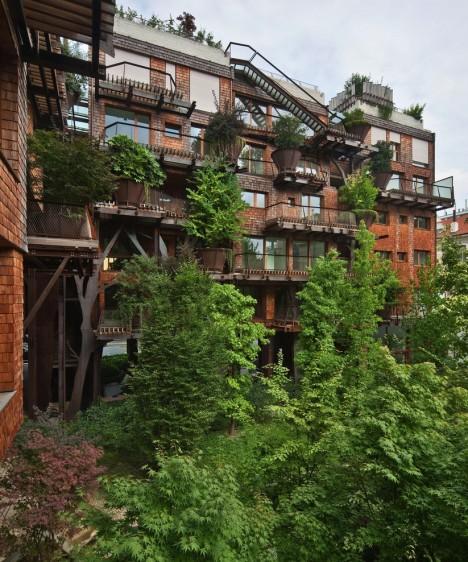 urban treehouse courtyard area