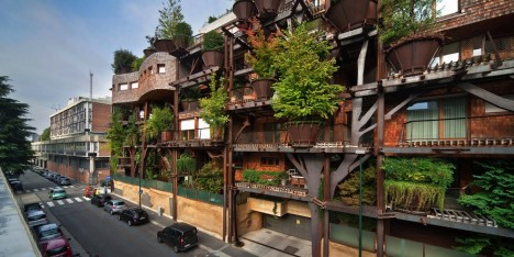 urban treehouse street view
