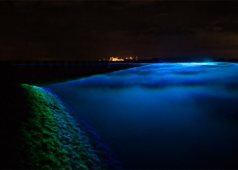 waterlicht projected at night