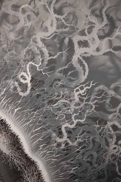microbe detail
