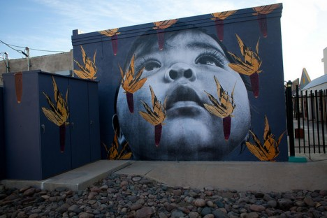 photo murals painted desert 4