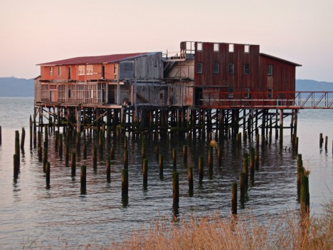 abandoned fish cannery 4