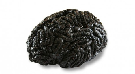 edible brains 2