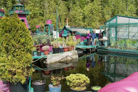 floating island pools plants