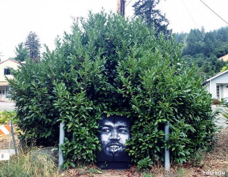 nature street art hendrix