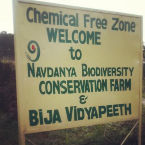 navdanya biodiversity conservation farm