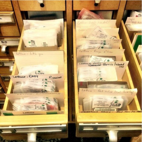 seed library of pima county public library