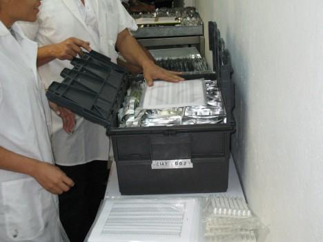 seed samples svalbard