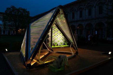 urban algae prototype system