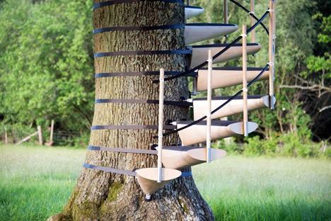 canopy steps closeup