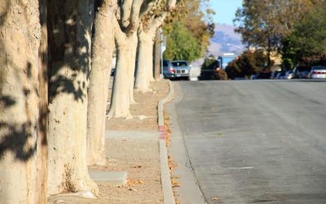 fault creep sidewalk bulge