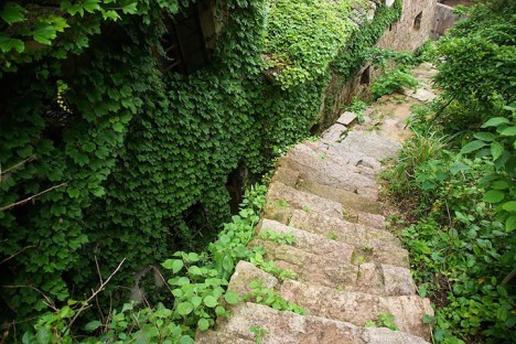 green overgrown alleyway path