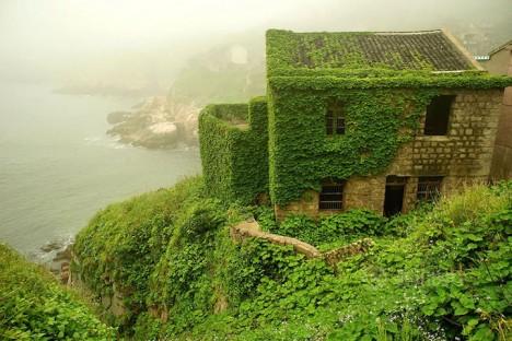 green town in mist