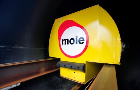 mole shipping container unit
