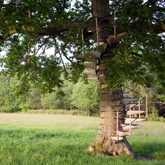 Branch Up Modular Spiral Staircase Wraps Trees For