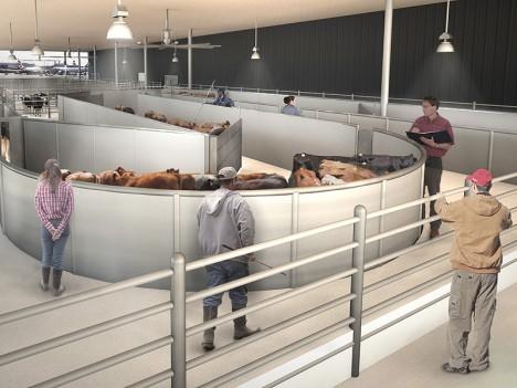 ark animal airport terminal