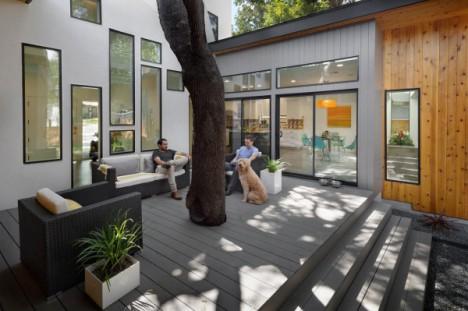 austin tree house 2