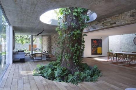 tree houses brazilian 2