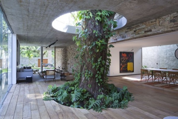 Arboreal Architecture: 14 Houses Built Around & Within Trees | Urbanist