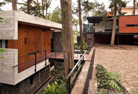 tree houses guatemala 2